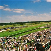Market Rasen Races Ladies Day